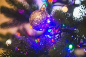 Carols around the Christmastree